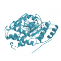 Recombinant human biotinylated MAP kinase 12 / p38 gamma, unactive, 5 µg