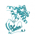 Recombinant human NTRK2 /TRKB Protein, His Tag, 1mg