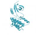 Recombinant human serine/threonine-protein kinase NEK7, 10 µg