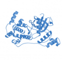 Recombinant human maternal embryonic leucine zipper kinase (MELK), protein kinase domain, 10 µg