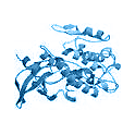 Recombinant human Protein Kinase C (PKC) nu / PKD3, 10 µg