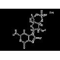 8-Br-cGMP, 50 µmol