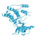 Recombinant Biotinylated Human FGL1 (64-312) Protein, Avitag™,Fc Tag (high sensitivity), 25 µg
