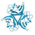 Recombinant Biotinylated Human IgG1 Fc, Avi Tag (Avitag™), His Tag, 2x 250 µg