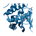Recombinant human protein kinase TAOK3, 10 µg