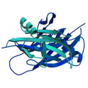 Recombinant human Protein kinase C (PKC) delta, 10 µg