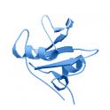 Recombinant, human c-src tyrosine kinase (CSK) / CYL protein kinase, 10 µg