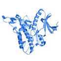 Recombinant human Homeodomain-interacting protein kinase 3 (HIPK3), protein kinase domain,10 µg