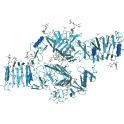 Recombinant human Insulin receptor (INS-R), protein kinase domain, 10 µg