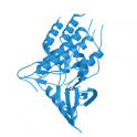 Recombinant human TGF-beta receptor type-1, TGFB-R1, 10 µg