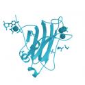 Recombinant human Protein kinase C (PKC)  gamma, 10 µg